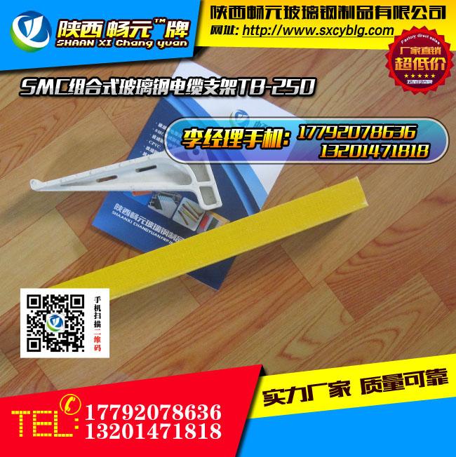 组合式玻璃钢电缆支架TB-250-1.jpg