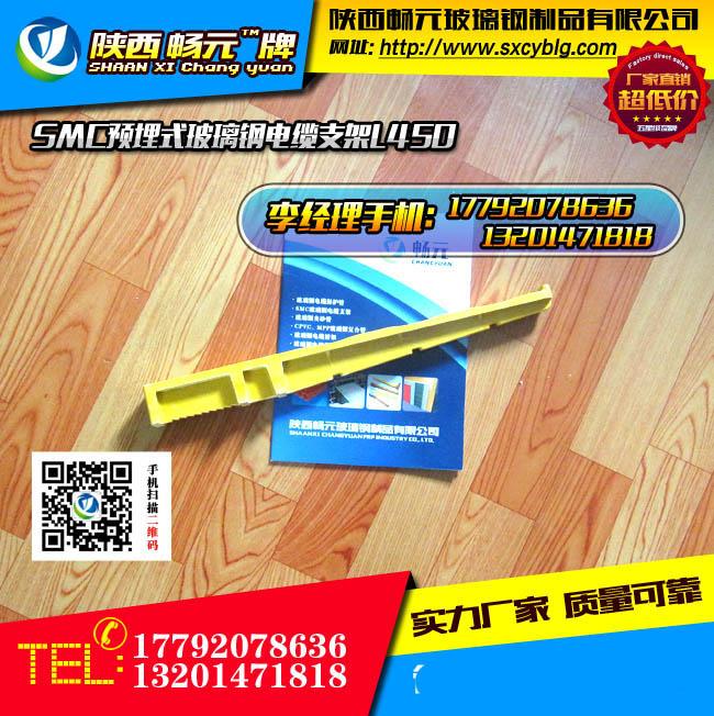 预埋式玻璃钢电缆支架L450-1.jpg