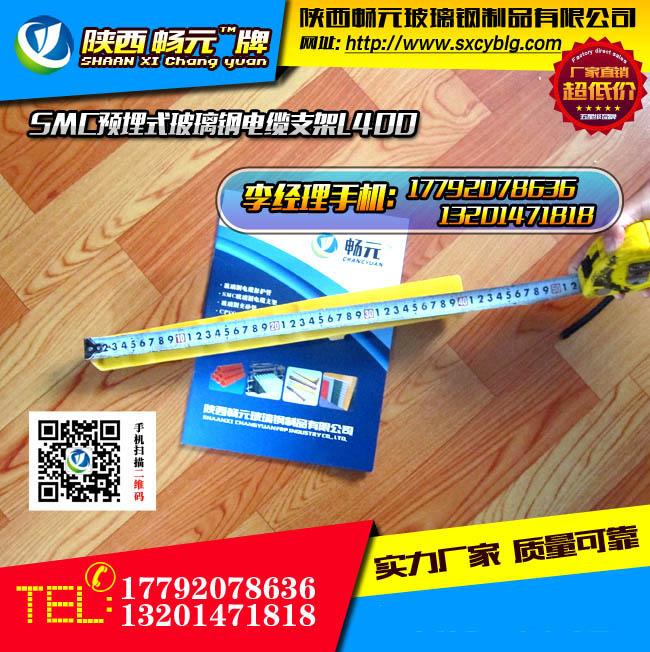 预埋式玻璃钢电缆支架L400-4.jpg