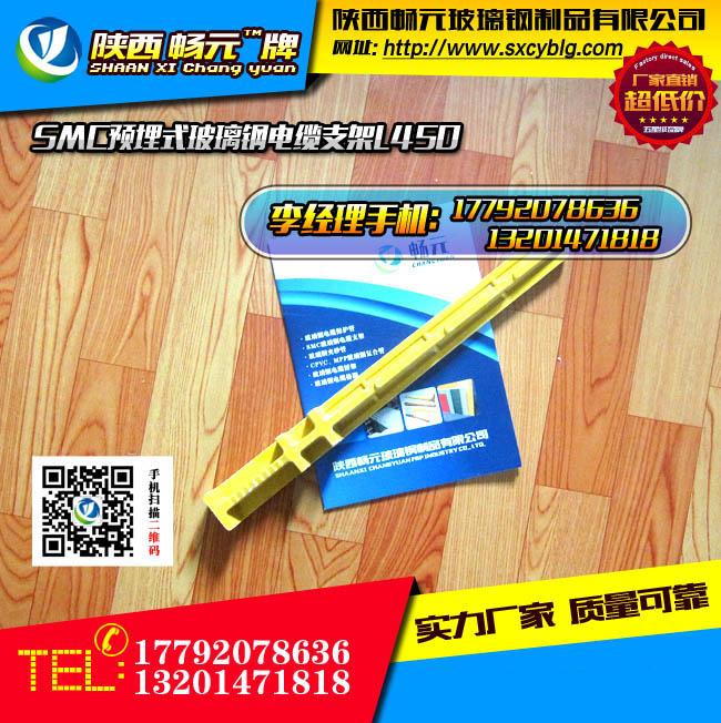 预埋式玻璃钢电缆支架L450-2.jpg