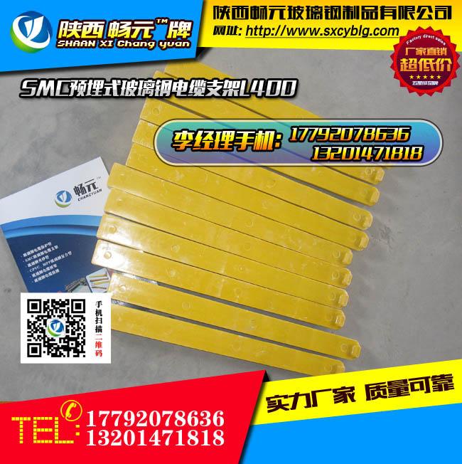 预埋式玻璃钢电缆支架L400-6.jpg